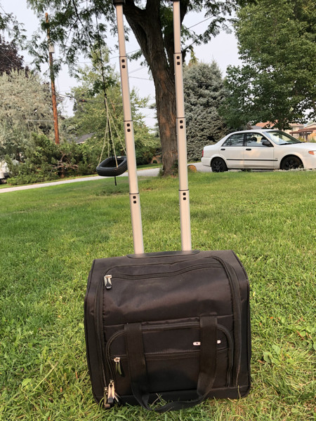 18ab9691bced PERFECT CARRY ON BAG - Castanet Classifieds